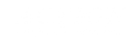 action carpet cleaners logo white